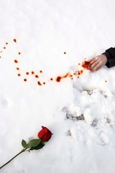 El Rastro de tu Sangre en la Nieve